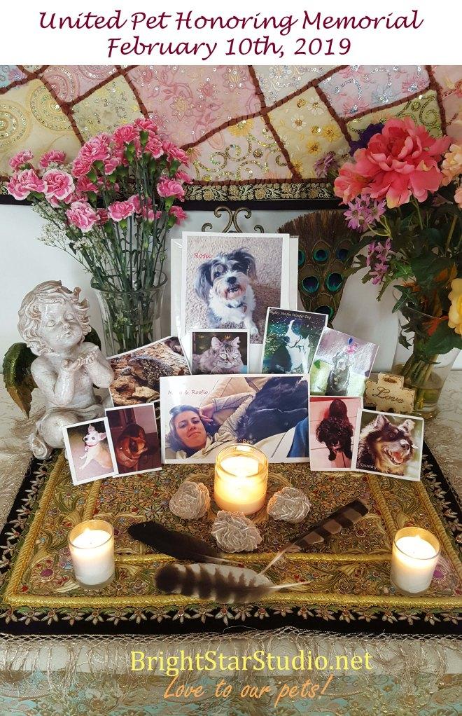 United Pet Honoring Memorial 10Feb 2019 copy