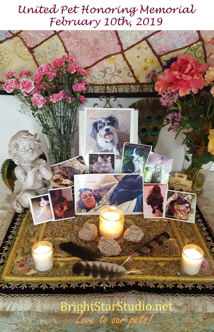 United Pet Honoring Memorial 10Feb 2019 copy