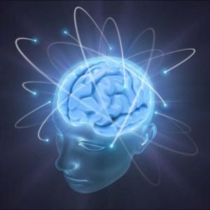 brain new