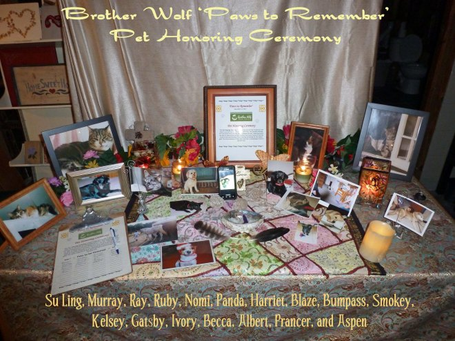 Brother Wolf Paws to Remember.jpg