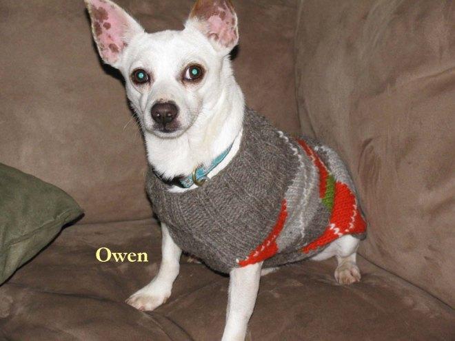 Pet Honoring dec 19 Owen1 copy